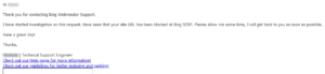 First response from Bing Webmaster support